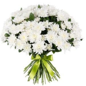 Хризантемы кустовые